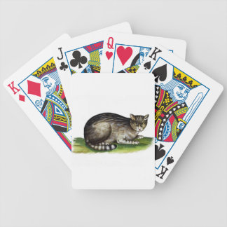 Funny Cranky House Cat Bicycle Playing Cards