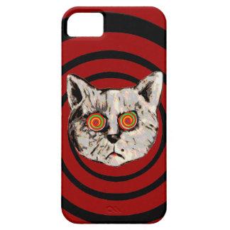 funny crazy cat iPhone SE/5/5s case