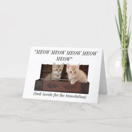 Funny Crazy Cat Lady Lover Birthday Card
