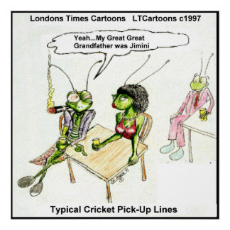 Funny Cricket Pick-Up Line Poster