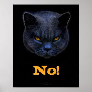 [Image: funny_cross_cat_says_no_poster-rd95a53de...vr_324.jpg]