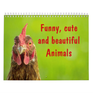 Funny, Cute and Beautiful Animals - Calendar 2017