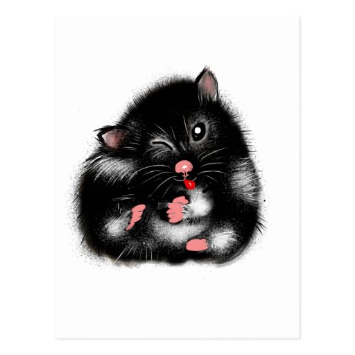 Funny cute black white syrian hamster gifts postcard | Zazzle