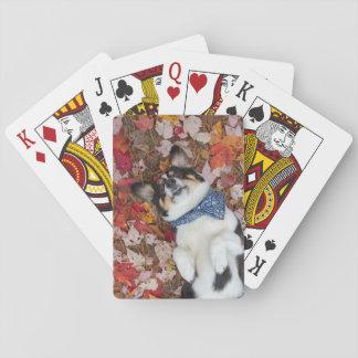 Funny, Cute, Corgi Look Poker Deck