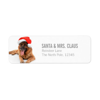 Funny Cute Dog In Christmas Hat Label