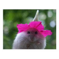 Funny Cute Hamster Postcard