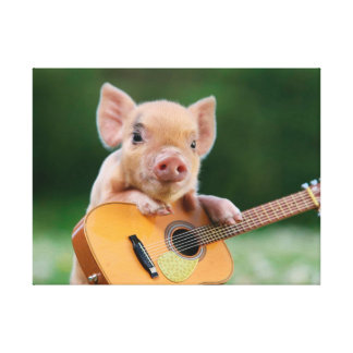 Funny Cute Pig Playing Guitar Canvas Print