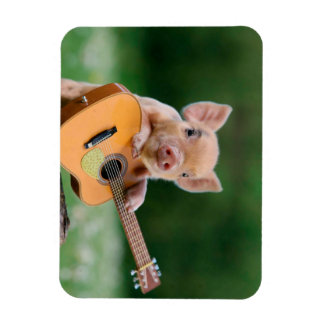 Funny Cute Pig Playing Guitar Magnet