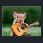 "Funny Cute Pig Playing Guitar Postcard<br><div class=""desc"">Funny Cute Pig Playing Guitar                            &quot;the pig&quot;,  snout,  &quot;funny pig&quot;,  cute,  &quot;cute pig&quot;,  piglet,  pig,  &quot;pig pink&quot;,  &quot;baby pig&quot;,  &quot;guitar pig&quot;,  sitting,  melody,  guitarist,  &quot;pig funny&quot;,  sound,  musician,  rural,  &quot;pig cute&quot;,  &quot;cute pigs&quot;,  &quot;pink pig&quot;,  humor,  playing,  classic,  concert,  &quot;pig guitar&quot;,  pink,  artists,  farm,  guitar,  music, </div>"