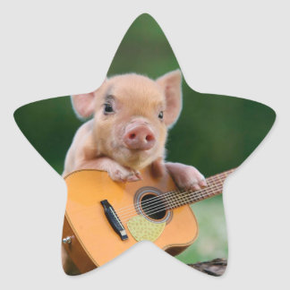 Funny Cute Pig Playing Guitar Star Sticker