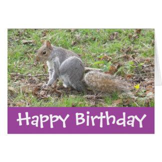 Funny Cute Scratching Squirrel Happy Birthday Card