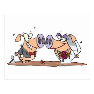 funny cute silly wedding pigs bride groom postcard