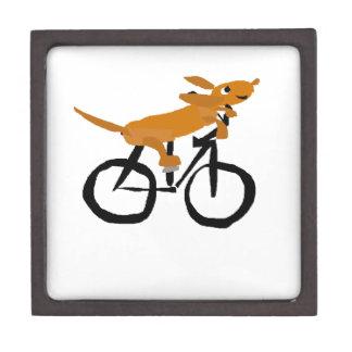 Funny Dachshund Riding Bicycle Gift Box