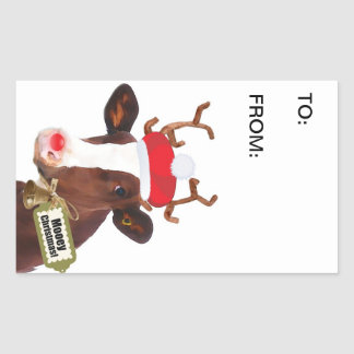 Funny Dairy Cow in Xmas Costume Gift Tag Rectangular Sticker
