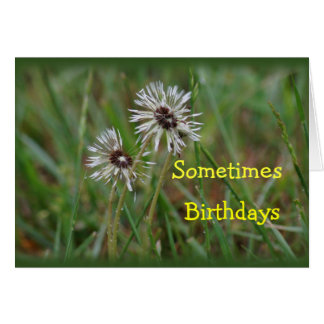 Funny Dandelion Birthday - change for any occasion Card