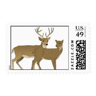 Funny Deer Rut is in the Air Postage
