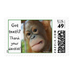 Funny Dentist Dental Health Stamp