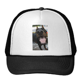 Funny Doberman Trucker Hat