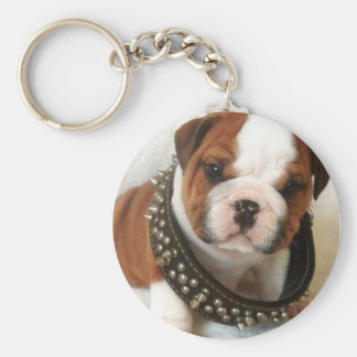 funny dog basic round button keychain