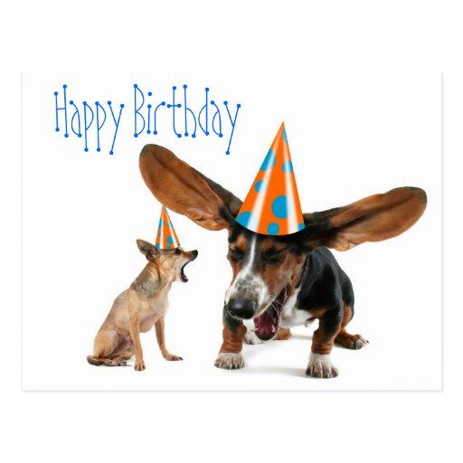 Birthday Fun Dog Quotes. QuotesGram