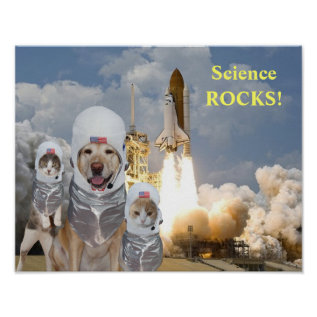 Funny Dog/cat Astronauts Science Poster at Zazzle