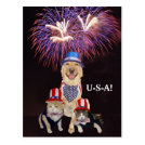 """standard_postcard - Moses & his two patriotic little sidekicks dressed for the 4th. You can customize the text. Now the text is a symbol for the chant """"U-S-A!"""" The fireworks background is thanks to PublicDomainPictures.net"""