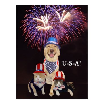 myrtieshuman Funny Dog/Cat July 4th Postcard