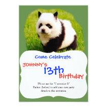Funny dog - chow chow- Pandog Card