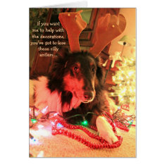 Funny Dog Christmas, Collie W/ Antlers Xmas Lights Card at Zazzle