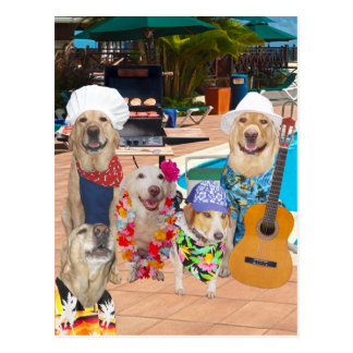 Funny Dog Customizable Pool Party Postcard