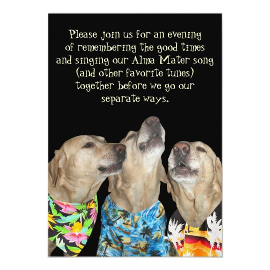 Funny graduation invitations announcements zazzle funny dog graduation party invitation stopboris Image collections