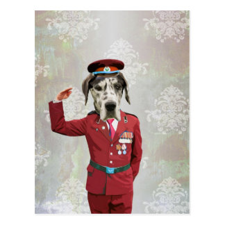 Funny dog in red uniform postcard