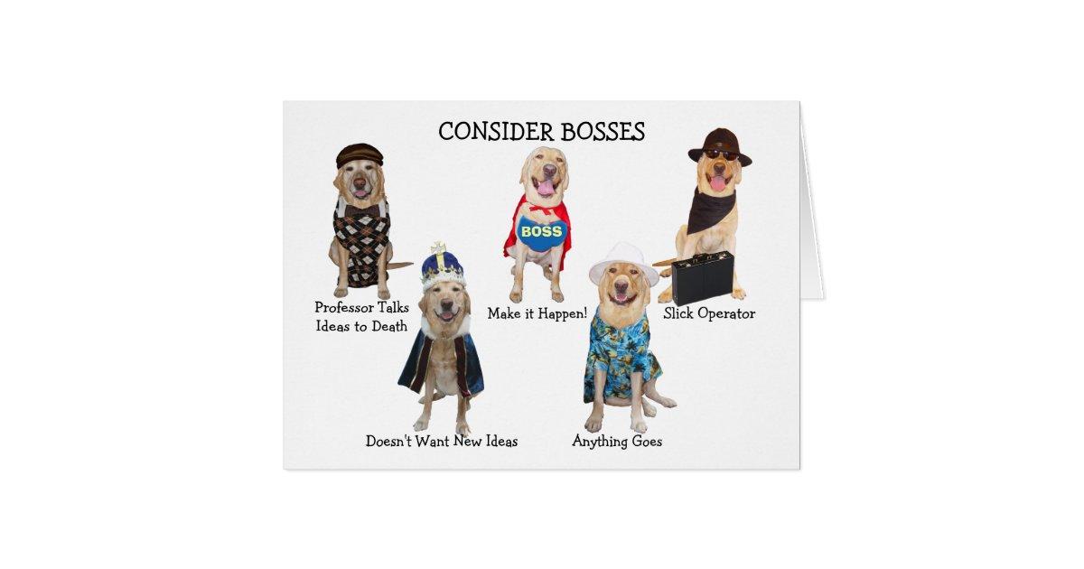 Funny doglab boss birthday card zazzle bookmarktalkfo Image collections