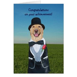 Congratulations funny dog - photo#37