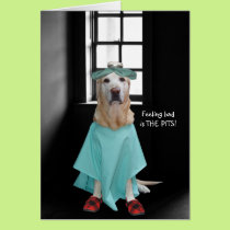 Funny Dog/Lab Get Well Card