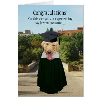 Funny Dog/Lab Graduation Card