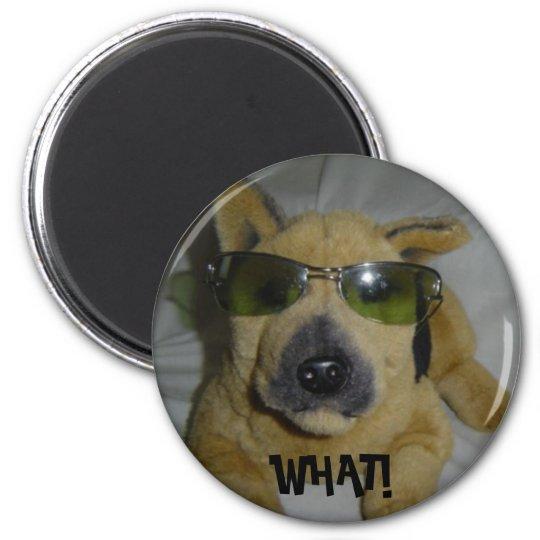 Funny Dog Magnet