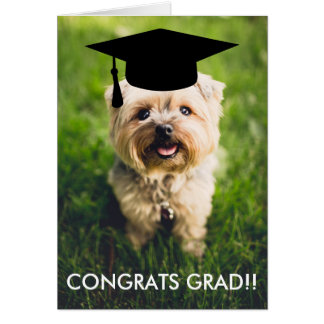 Funny Dog Photo Graduation Card, Custom Dog Photo Card