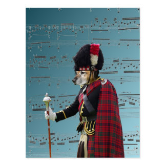Funny dog pipe major postcard