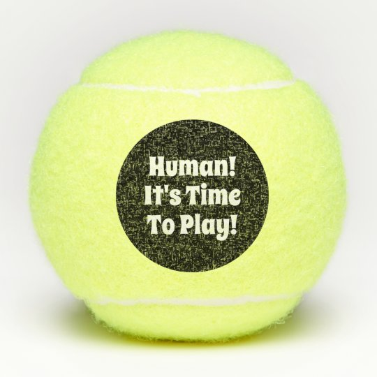 Funny Dog Toy Quote Tennis Ball Zazzle Com