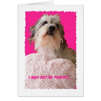 Funny Dog Valentine    All Yours Valentine Card