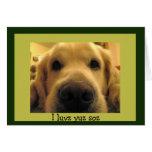 Funny Dog Valentines Cards