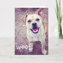 Funny Doggie Father's Day Greeting Card