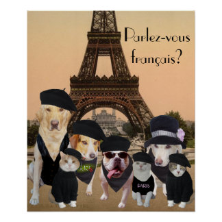 Funny Dogs and Cats French Teacher Poster
