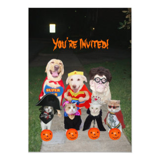 Funny Dogs & Cats Halloween 5x7 Paper Invitation Card