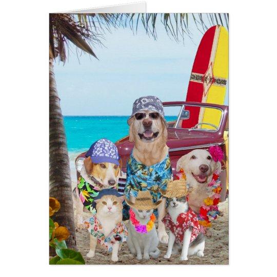 Funny DogsCats HawaiianSurfer Birthday Card – Hawaiian Birthday Greetings