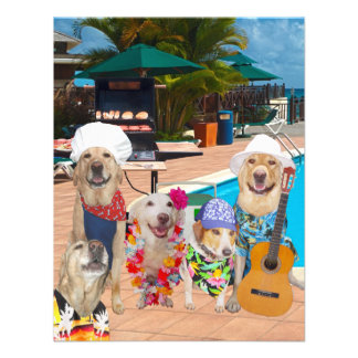 Funny Dogs Customizable Pool Party/BBQ Invitation