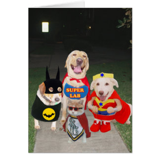 Funny Dogs Halloween Card