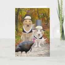 Funny Dogs/Labs Thanksgiving Holiday Card