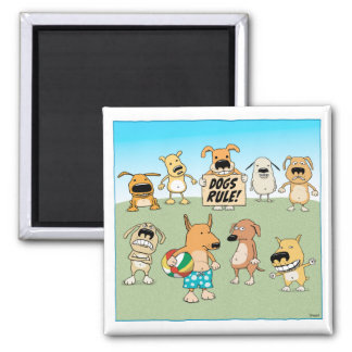Funny Dogs Rule magnet